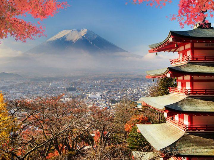 Japanmarkt.de: Atheneum opens new office in Japan